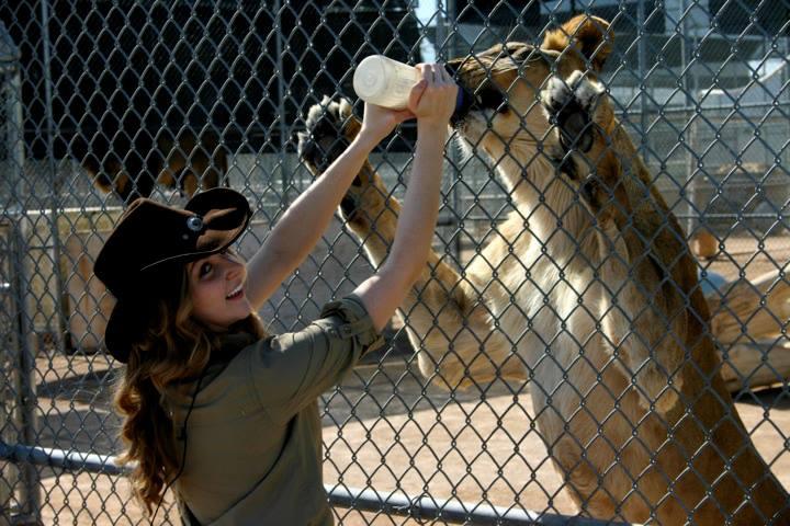 Hilary Lion Habitat Ranch